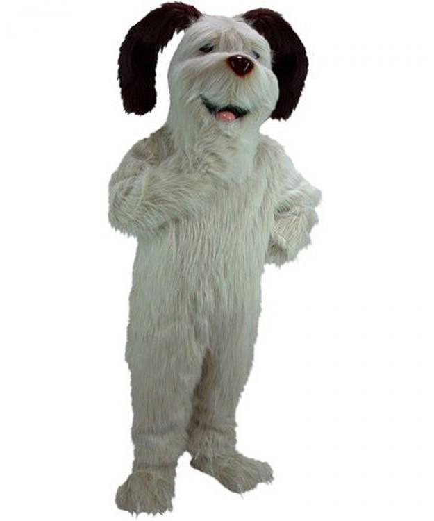 Beste Spielothek in Alf finden