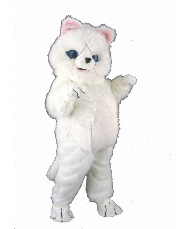 Katzen Kostüm Verleih Maskottchen