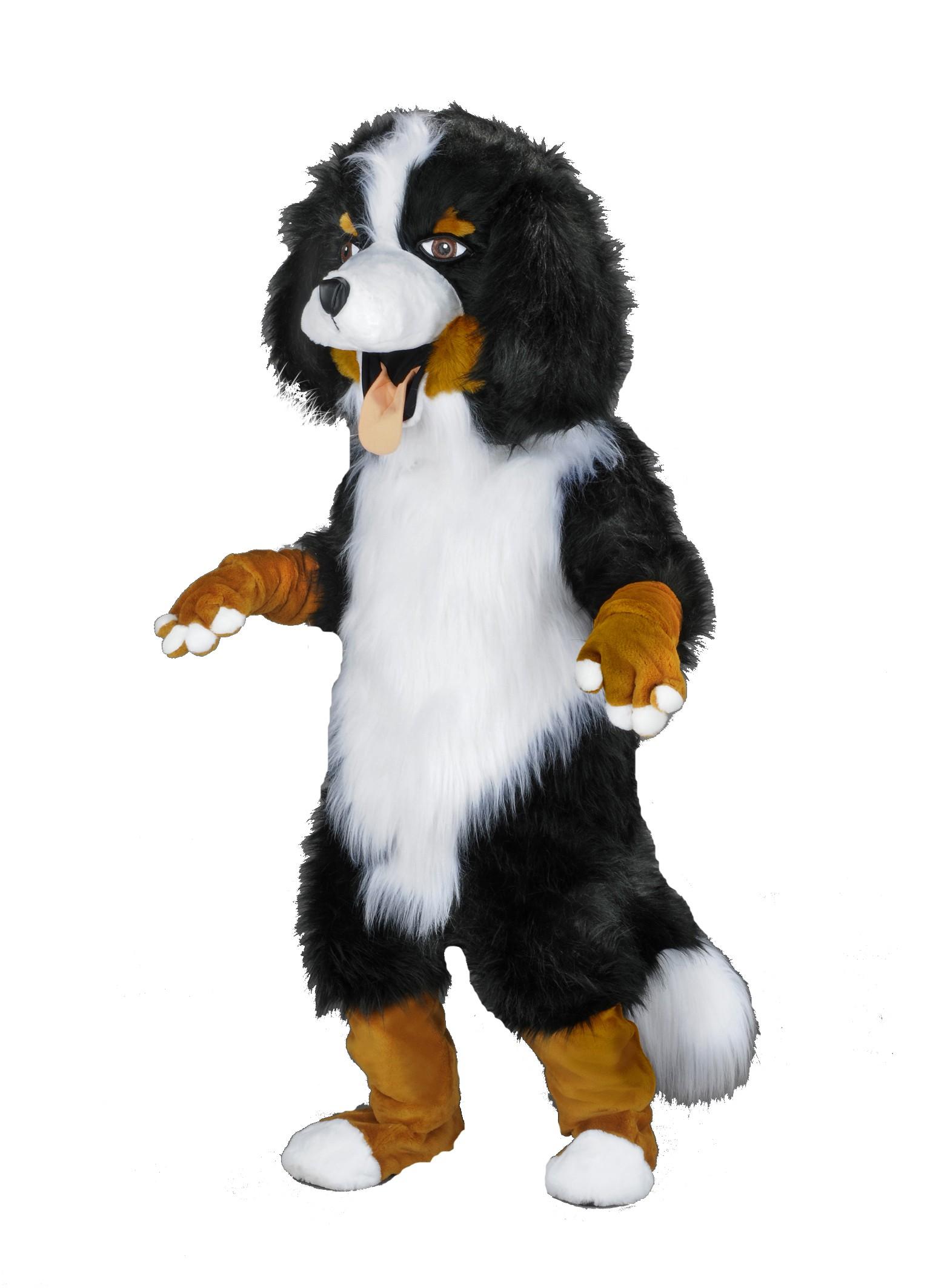 213b berner sennenhund kost me maskottchen hund 27. Black Bedroom Furniture Sets. Home Design Ideas